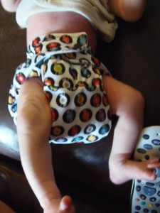 Baba&Boo Reusable Funky Nappy Still bulky as two insets, but getting a better fit!