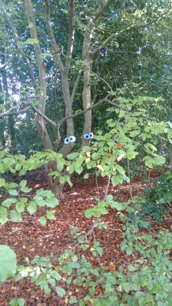 Spooky Walk at Hinton Ampner