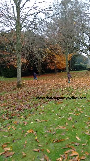 Running through leaves!