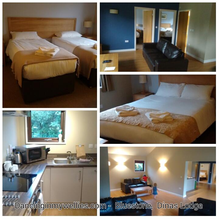 Bluestone 4 Bedroom Dinas Lodge