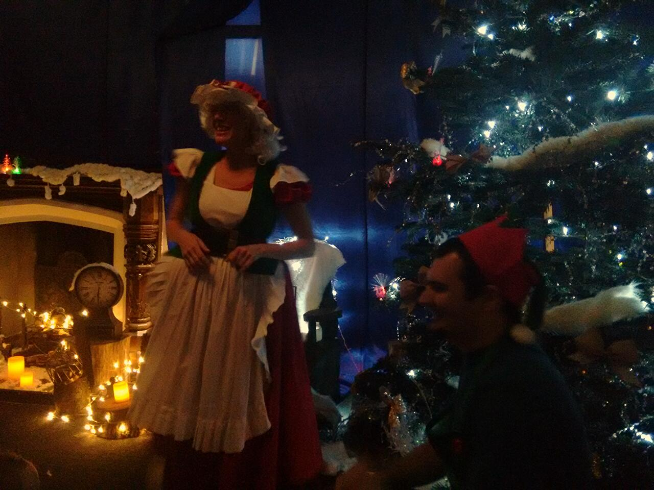 Christmas at Marwell Mrs Claus