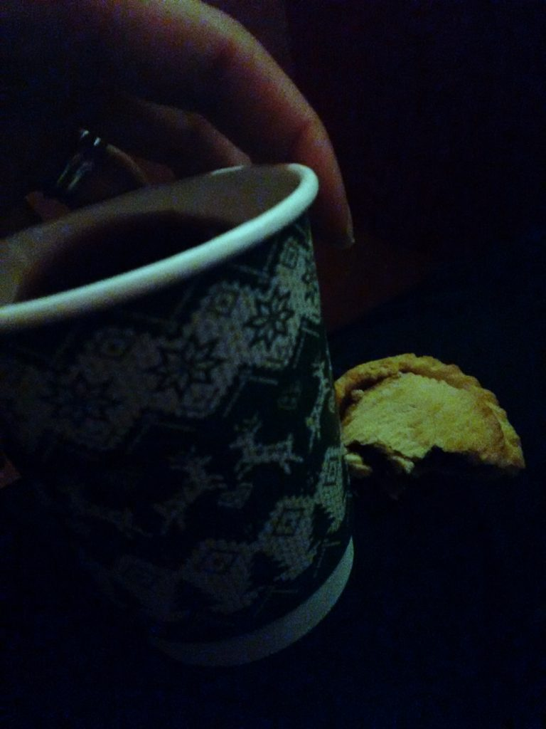Mulled Wine and Mince Pies at Marwell