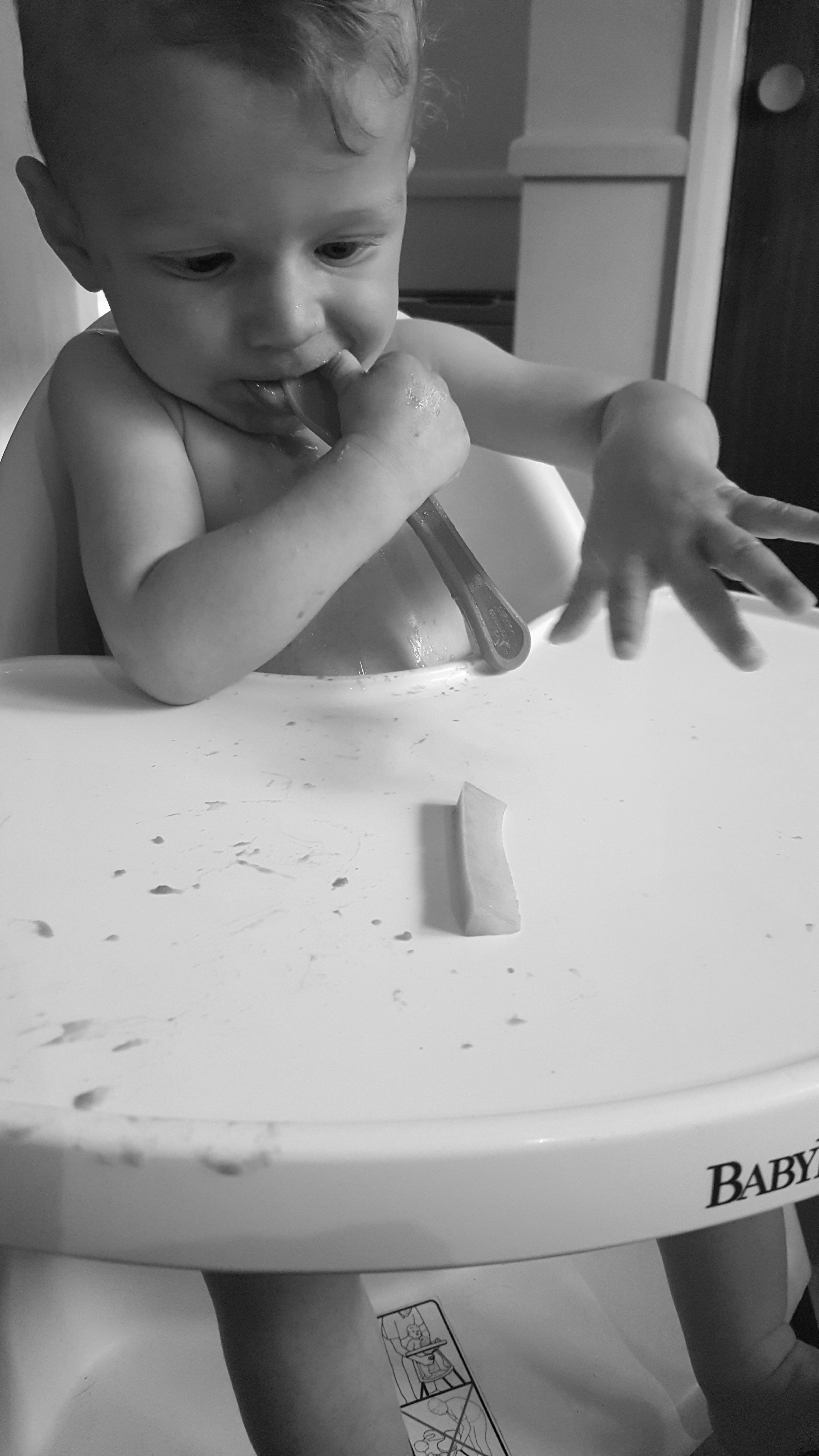 Weaning - baby in baby bjorn high chair